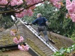 Roof Cleaning Preparation